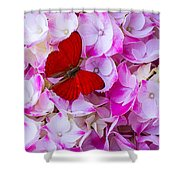 Red Butterfly On Hydrangea Shower Curtain