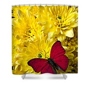Red Butterfly On Poms Shower Curtain