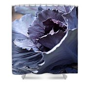 Red Cabbage Abstract Shower Curtain