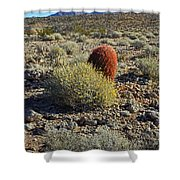 Red Cactus Shower Curtain