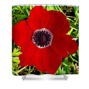 Red Calanit Shower Curtain