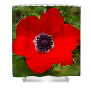 Red Calanit Magen Shower Curtain
