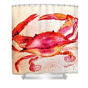 Red Crab  Shower Curtain