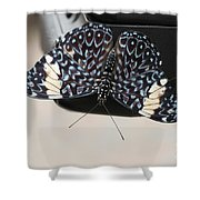 Red Cracker Butterfly Shower Curtain