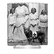 Red Cross Parade, 1920 Shower Curtain