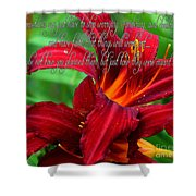 Red Day Lily And Quote Shower Curtain