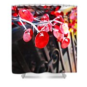 Red Decorations Shower Curtain