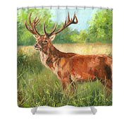 Red Deer Shower Curtain