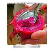 Red Dragon Fruit In Sukhothai-thailand Shower Curtain