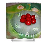 Red Eggs And Daisies Shower Curtain