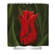 Red Elegance Shower Curtain