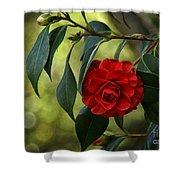 Red Elegance Shower Curtain