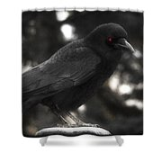 Red Eye Shower Curtain
