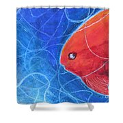 Red Fish Shower Curtain