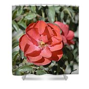 Red Flower II Shower Curtain