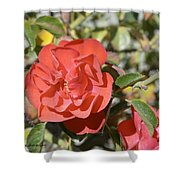 Red Flower IIi Shower Curtain