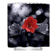 Red Flower Petals Shower Curtain
