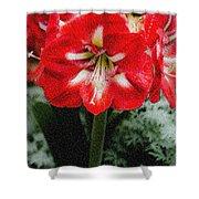 Red Flower With Starburst Shower Curtain
