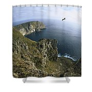 Red-footed Booby And Swallow-tailed Shower Curtain