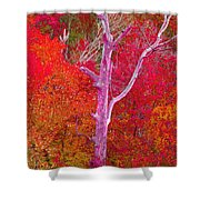 Pink Tree In A  Red Forest Shower Curtain