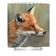 Red Fox Portrait Shower Curtain by David Stribbling