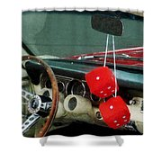 Red Fuzzy Dice In Converible Shower Curtain