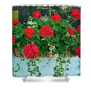 Red Geranium 1 Shower Curtain