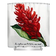 Red Ginger Poem Shower Curtain