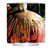 Red Gold Glitter Shower Curtain