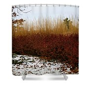 Red Gold Hedge Shower Curtain
