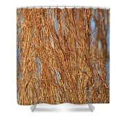 Red Gold Shower Curtain