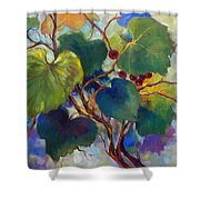 Red Grape Vines Shower Curtain
