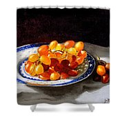 Red Grapes On Chinese Dsh Shower Curtain