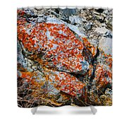 Red Growth Rock Shower Curtain