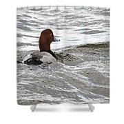 Red Head Pride Shower Curtain