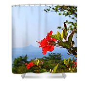 Red Hibiscus Flower Shower Curtain