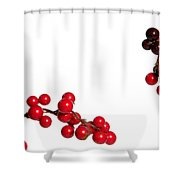 Red Holly Shower Curtain