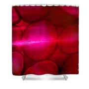 Red Hot Mystery Shower Curtain