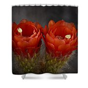 Red Hot Pair  Shower Curtain