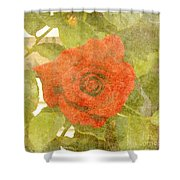 Red Hot Rose Shower Curtain