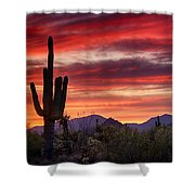 Red Hot Sonoran Sunset Shower Curtain