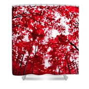 Red I Shower Curtain