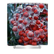 Red Ice Berries Shower Curtain