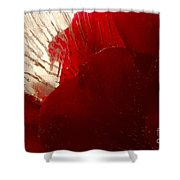 Red Ice Shower Curtain