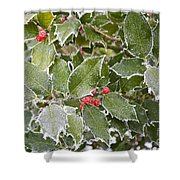 Red In Winter Shower Curtain