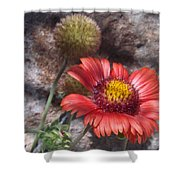 Red Indian Blanket Shower Curtain