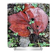 Red Leaf On Green Shower Curtain
