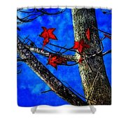 Red Leaves Blue Sky In Autumn Shower Curtain