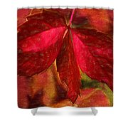Red Leaves - Cave Dwelle Shower Curtain
