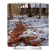 Red Leaves On Snow - Cabin In The Woods Shower Curtain